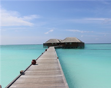 A Maldives Honeymoon class=